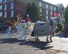 Carriage Limousine Service - Horse Drawn Carriages: One of our Indian Wedding carriages during a Baraat in Canonsburg, PA