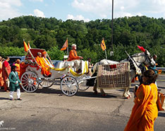 Carriage Limousine Service - Horse Drawn Carriages: Indian Wedding Carriage during a ceremony near Pittsburgh, PA