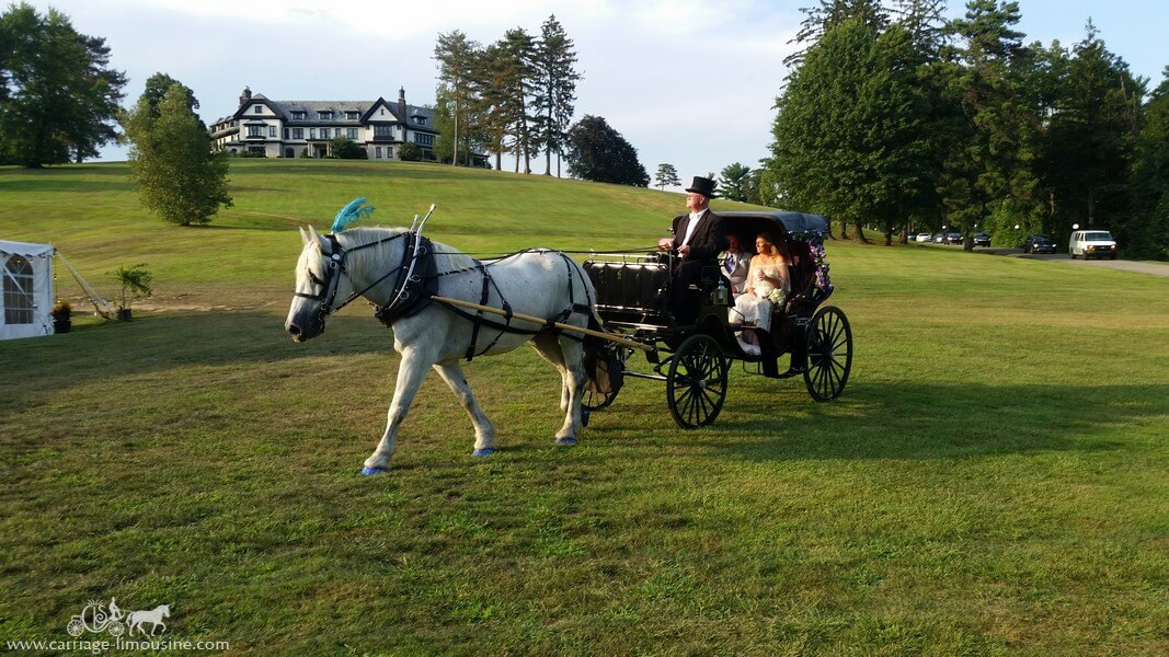Victoria Princess Carriage