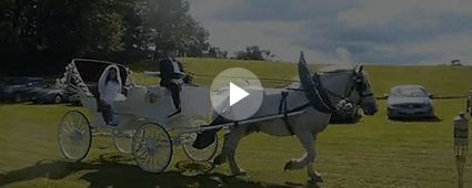 Victorian Horse Drawn Carriage