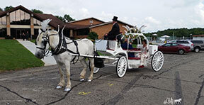 Carriage Limousine Service - Horse Drawn Carriages: Our Cinderella carriage at a wedding in SNPJ, PA