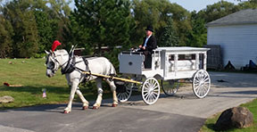 Carriage Limousine Service - Horse Drawn Carriages: Our one of a kind horse drawn funeral coach during a funeral in Sheffield, PA