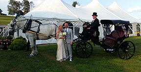 Carriage Limousine Service - Horse Drawn Carriages: Our Princess Carriage after a wedding at Linden Hall in Daweson, PA
