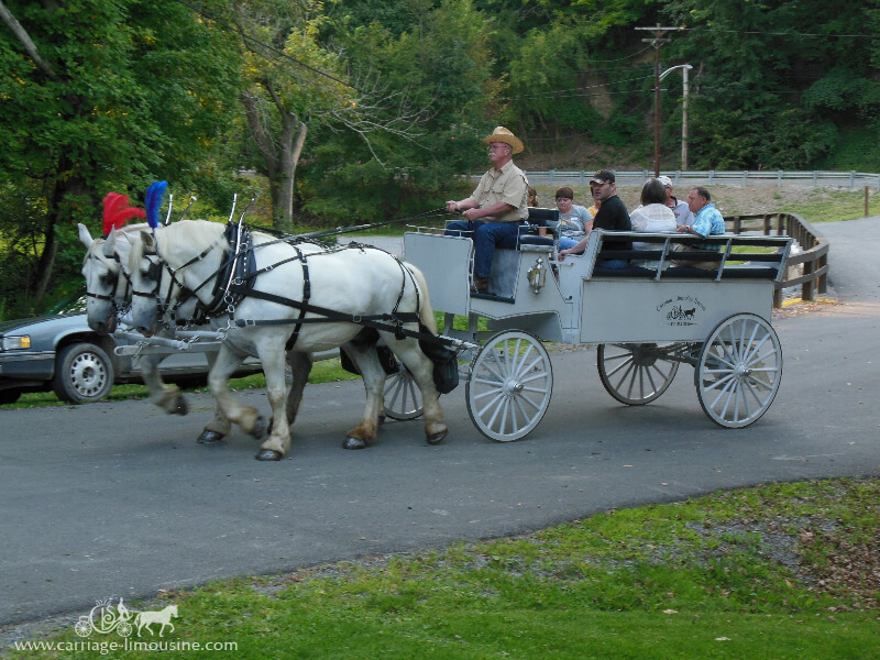 Horse Drawn Carriage Wedding Horse Drawn Carriages Our