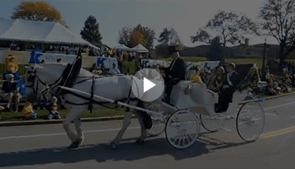 Carriage Limousine Service - Horse Drawn Carriages: Our hand made Funeral Coach in a Veterans Day Parade in Clarksburg, WV