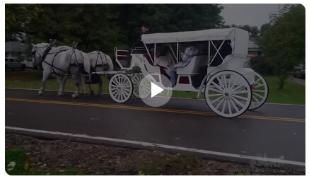 Carriage Limousine Service - Horse Drawn Carriages: Our Stretch Victorian Carriage at a Halloween party in Uniontown, OH