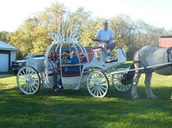 Carriage Limousine Service - Horse Drawn Carriages: Our Victorian/Vis-a-vis carriage at a Quincenera