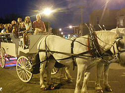 Carriage Limousine Service - Horse Drawn Carriages: Our new one of a kind Limousine Carriage giving rides at the Wellsville OH Italian Festival