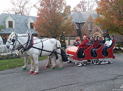 Carriage Limousine Service - Horse Drawn Carriages: Our horse drawn sleigh at a neighborhood holiday party in Lakewood, OH