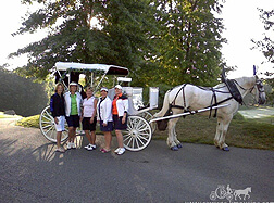 Carriage Limousine Service - Horse Drawn Carriages: Our Victorian Carriage used for photo op's at a golf outing near Sewickley PA