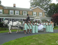 Carriage Limousine Service - Horse Drawn Carriages: Our Cinderella Carriage after a wedding at Julia's Bed & Breakfast in Hubbard, OH
