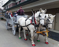 Carriage Limousine Service - Horse Drawn Carriages: Our Limousine Carriage giving rides in Glendale Cemetery in Akron OH