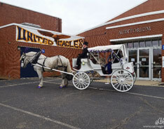 Carriage Limousine Service - Horse Drawn Carriages: Arriving at prom in Hanoverton, OH