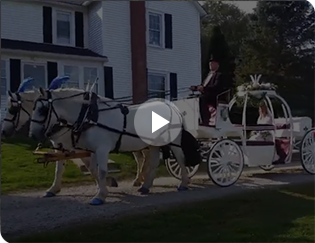 Our Cinderella carriage at a wedding in Washington, PA at Destiny HIll Farm