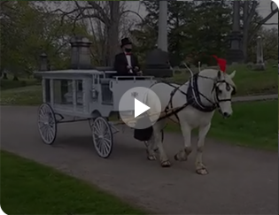 Horse Drawn Carriages: Our Funeroal Coach in Crooksville, OH