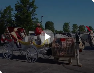Indian Baraat Wedding Carriage in Westlake Ohio