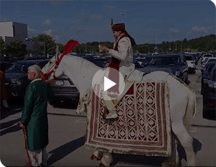 Indian Baraat Wedding Horse in downtown Pittsburgh, PA