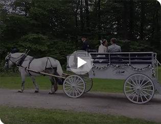 Our Limousine Carriage giving rides at an event in Beaver, PA