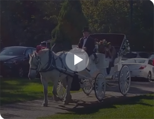 Our Victorian Carriage during a wedding in Salem, OH