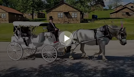 Carriage Limousine Service - Horse Drawn Carriages: Our Victorian carriage at a wedding in Warren OH at Avalon Inn
