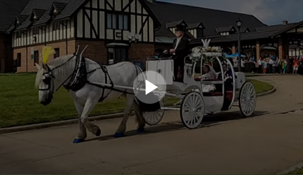 Carriage Limousine Service - Horse Drawn Carriages: Our Cinderella Carriage at a wedding at Landoll's Castle in Loudonville, OH