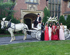 Carriage Limousine Service - Horse Drawn Carriages: Our one of a kind Cinderella carriage after a wedding Stan Hywet in Akron, OH