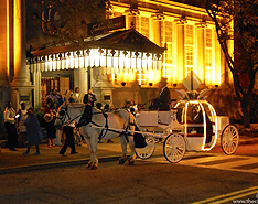 Carriage Limousine Service - Horse Drawn Carriages: Our one of a kind Cinderella carriage after a wedding reception in Cleveland Ohio