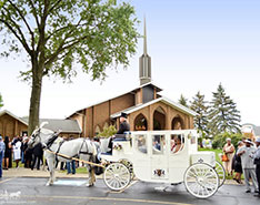 Carriage Limousine Service - Horse Drawn Carriages: Our hand crafted Royal Coach at a wedding in Akron, OH