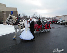 Carriage Limousine Service - Horse Drawn Carriages: Our one of a kind Sleigh at a wedding in Wintersville Ohio