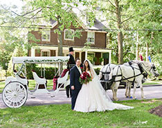 Carriage Limousine Service - Horse Drawn Carriages: Our Stretch Victorian Carriage after a wedding in Sewickley, PA