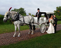Carriage Limousine Service - Horse Drawn Carriages: Our Victorian carriage at a wedding at Gervasi Vineyard in Canton, OH