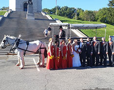 Carriage Limousine Service - Horse Drawn Carriages: Our one of a kind Limousine Horse Drawn Carriage at a wedding in Canton, OH