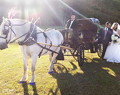 Carriage Limousine Service - Horse Drawn Carriages: Princess Carriage at a wedding at Linden Hall in Daweson, PA
